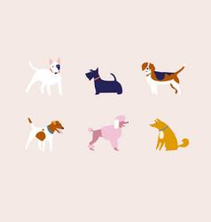 breed dogs in vector image