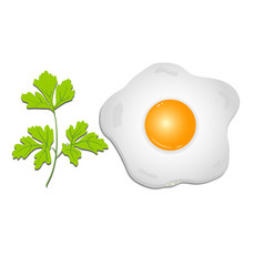 Fried egg with a sprig of parsley on a transparent vector