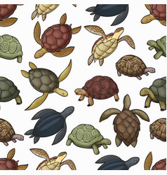 Sea turtle animals seamless pattern background vector