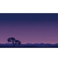 Landscape trees at night silhouettes vector image