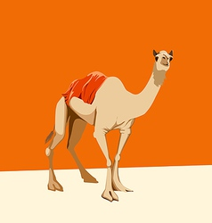 camel on an orange background vector image