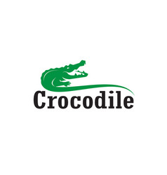 crocodile design and letters on white vector image