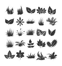 Leaves and grass silhouettes on white background vector