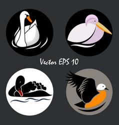 logo birds6 vector image