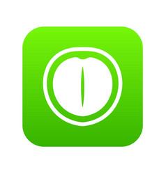 macadamia nut icon digital green vector image