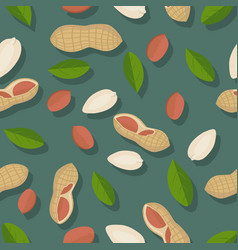 Peanut seamless pattern vector