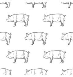 pig vintage engraved seamless pattern vector image