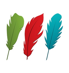 Set colorful feathers vector