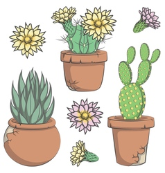 Set of colored cactus with flowers in old pots vector image