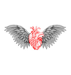 Textured heart with wings vector