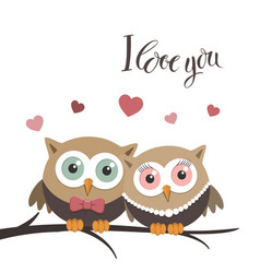couple of owls in love on a white background and vector image vector image