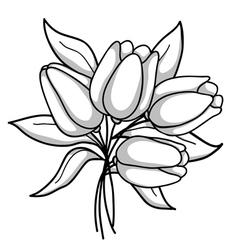 Monochrome bouquet of tulips Black white gray vector image