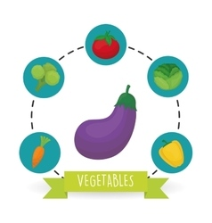 Vegetable design over white background vector image
