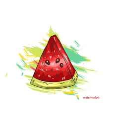 watermelon with colorful splashes vector image vector image