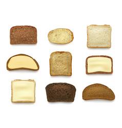 bread sliced healthy natural baking food top view vector image