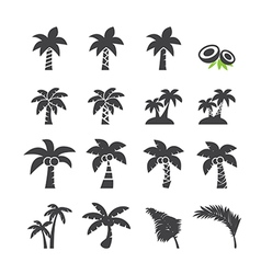 coconut tree icon vector image