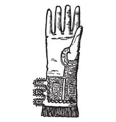 elizabethan glove vintage engraving vector image