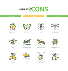 insects collection - modern line design style vector image