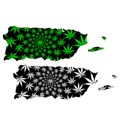 Puerto rico - map is designed cannabis leaf vector