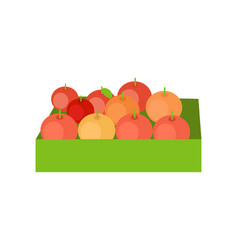 Red apples in a box vector