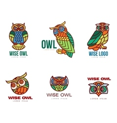 Set of colorful owl logo templates vector image