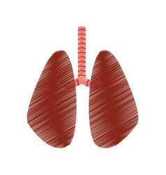 Set of human lungs icon image vector