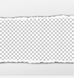 torn snatched piece transparent paper vector image