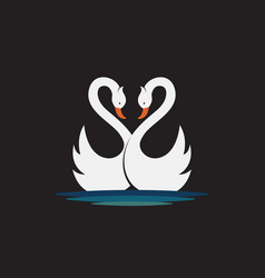 two white swan design on black background wild vector image