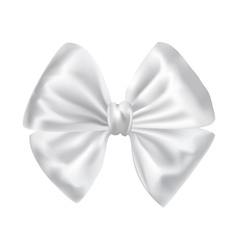 white silky bow ribbon vector image vector image