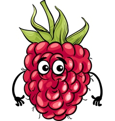 funny raspberry fruit cartoon vector image