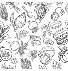 hand drawn superfood seamless pattern vector image
