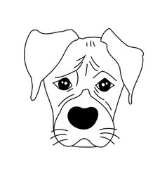 monochrome boxer dog cute head and expression vector image