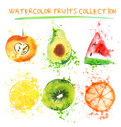 set of fresh fruit watercolor objects vector image