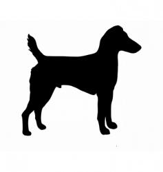 westfalen terrier vector image vector image