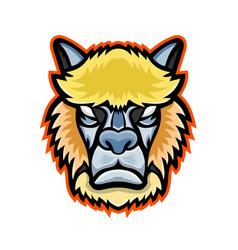 Angry alpaca head mascot vector