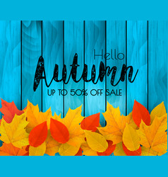 autumn sale background with colorful leaves on vector image