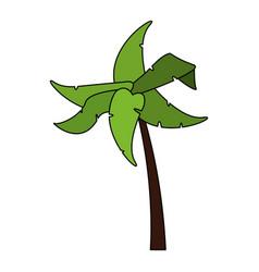 Color image cartoon tropical palm tree vector