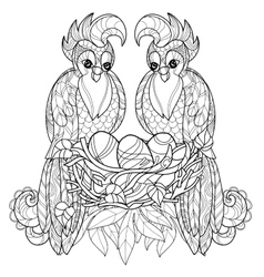 entangle parrot on nest hand drawn vector image