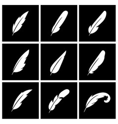 Feather on black background vector
