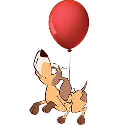 hunting dog and and balloon Cartoon vector image vector image
