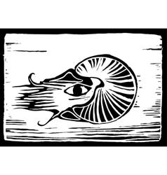 Nautilus vector image
