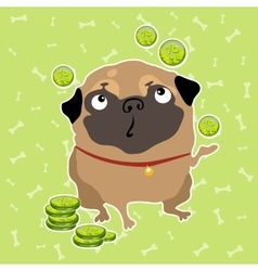 Pug dog finds the money background with bones vector