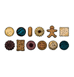 set different kind cookies vector image