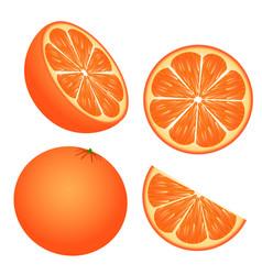 set of orange slices isolated on white background vector image