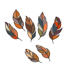 Set ornate intricate feather doodle vector