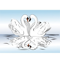 pair of swans vector image
