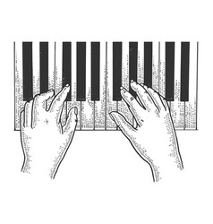 Hands and piano sketch engraving vector