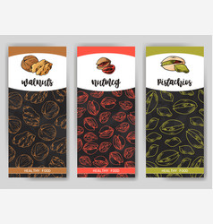 Nuts and seeds collection hand drawn elements vector
