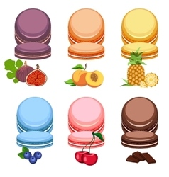 Set Multi-colored macaroons vector image