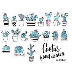 cactus doodle set hand drawn vector image vector image